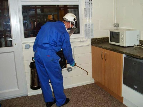 pest_control_service_kitchen